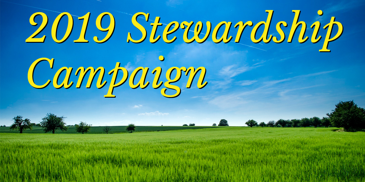 "grassy field with blue sky and words ""2019 Stewardship Campaign"""